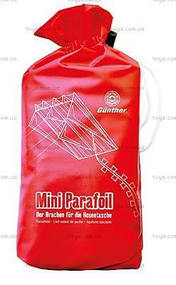 Воздушный змей Mini Parafoil, PG1189, купить