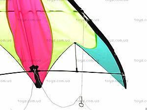 Воздушный змей «Ветер», 168B, цена