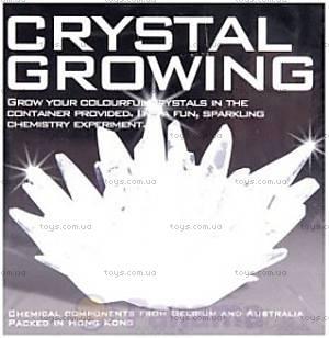 Выращивание кристаллов, 00-03913