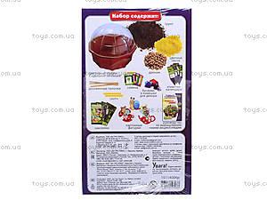 Набор для экспериментов «Чайная поляна», 0395, купить