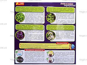 Набор для экспериментов «Чайная поляна», 0395, отзывы