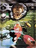 Вышивка бисером «Кот и карпы кои», ВБ 1048, фото