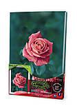 Вышивка гладью по номерам «Роза», VGL-02-09, цена