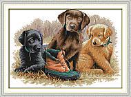 Вышивка крестиком картины «Лучшие друзья», D431