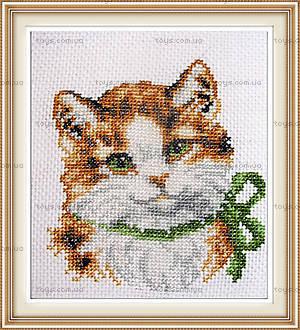 Вышивка крестиком картины «Модная кошка», D189