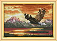 Вышивка крестиком картины «Орел», D427, фото
