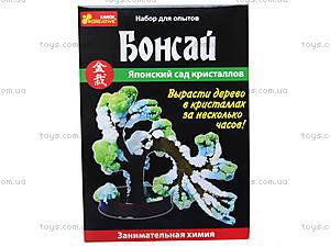 Набор для творчества «Японский сад кристаллов: Бонсай», 0349