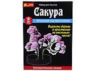 Набор для выращивания кристаллов «Сакура», 0350, купить