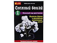 Набор для выращивания кристаллов «Снежный бонсай», 0352, фото
