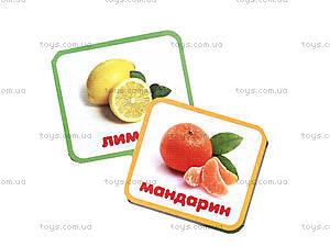 Лото для детей «Овощи и фрукты», 05, отзывы