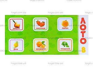 Детское лото «Овощи и фрукты», 161, цена