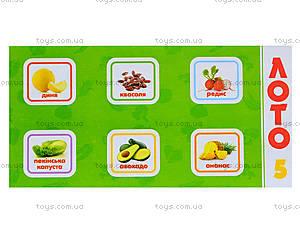 Детское лото «Овощи и фрукты», 161, детские игрушки