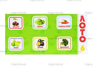 Детское лото «Овощи и фрукты», 161, купить