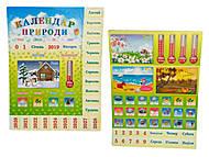 Игра детская «Календарь природы», 21076, купить