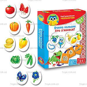Игра для дошкольников «Цвета, кто появился», VT1306-07, магазин игрушек