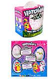 Интерактивный пингвин в яйце, 5 этапов игры, 9950, купить