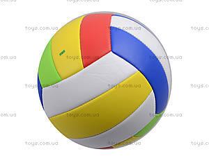 Игровой волейбольный мяч, BT-VB-0029, цена
