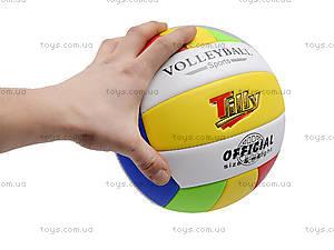 Игровой волейбольный мяч, BT-VB-0029, игрушки