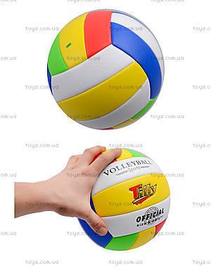 Игровой волейбольный мяч, BT-VB-0029