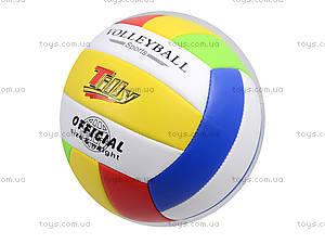 Игровой волейбольный мяч, BT-VB-0029, детские игрушки