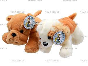 Игрушечная мягкая собачка, F-F2205, детские игрушки