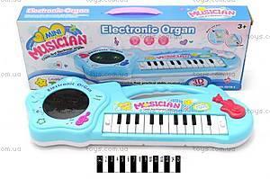 Игрушечное пианино «Маленький музыкант», 1019-1