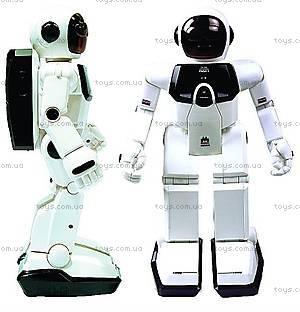 Игрушечный робот «Собери сам», S88311