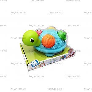 Игрушка текстурная «Черепашка», 005181S