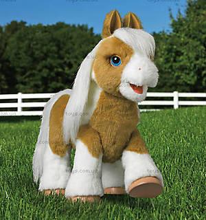 Интерактивная малышка пони «Батерскоч» Фур Риал, 52194, купить