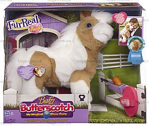 Интерактивная малышка пони «Батерскоч» Фур Риал, 52194, цена