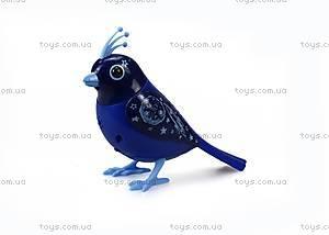 Интерактивная птичка DigiBirds «Апполло», 88293, фото