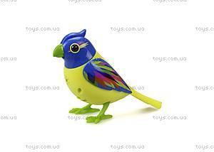Интерактивная птичка DigiBirds «Бразилия», 88289, купить