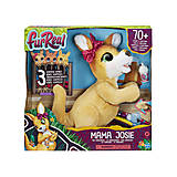 "Интерактивная игрушка ""Кенгуру мама Джози и ее кенгурята"", E6724"