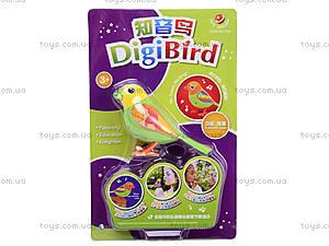 Интерактивные птички DigiBirds, 794, магазин игрушек