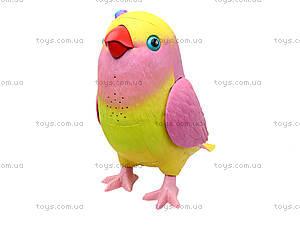 Интерактивная игрушка «Попугай-повторюшка», TK271, toys.com.ua