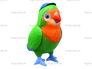 Интерактивная музыкальная игрушка «Попугай-повторюшка», TK272, купить