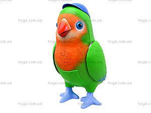 Интерактивная музыкальная игрушка «Попугай-повторюшка», TK272, игрушки