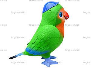 Интерактивная музыкальная игрушка «Попугай-повторюшка», TK272, магазин игрушек