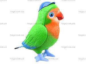 Интерактивная музыкальная игрушка «Попугай-повторюшка», TK272, toys.com.ua
