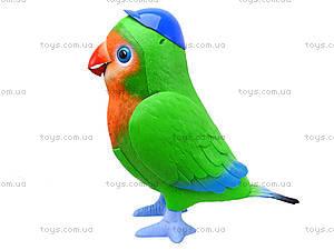 Интерактивная музыкальная игрушка «Попугай-повторюшка», TK272, toys