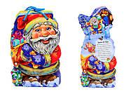 Детская книжка «Дед Мороз» со шнурком, М555005У, купить
