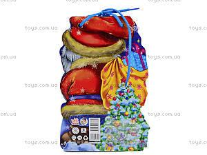Детская книжка «Дед Мороз» со шнурком, М555005У, отзывы