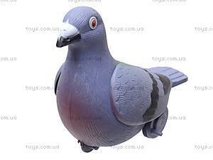 Заводной голубь, 826, фото