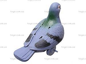 Заводной голубь, 826, отзывы