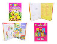 Книга  для детей «English в рисунках», Талант, фото