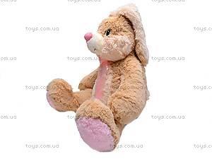Заяц мягкий «Франя», К029ЕС, купить