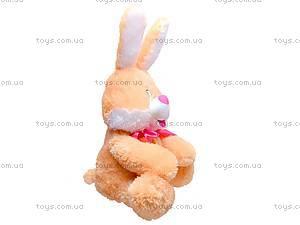 Заяц «Ушастик», 11.03.04, купить
