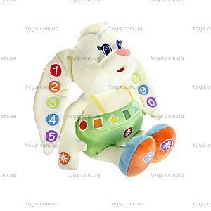 Мягкая развивающая игрушка «Зайка-знайка», ZAZ01\M, фото