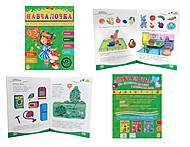 Сборник развивающих заданий «Обучалочка» 2-3 года, С479013У1857, купить