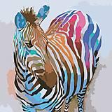 Зебра поп-ар, картина по номерам, КНО2463, фото